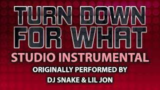 Turn Down For What (Cover Instrumental) [In the Style of DJ Snake & Lil Jon]