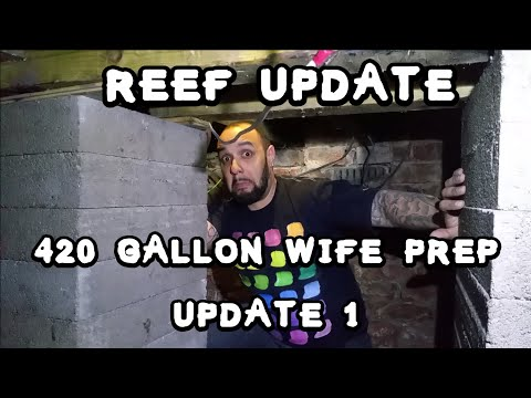 Re-enforcing The Floor For The 420 Gallon Reef Aka The Wife.