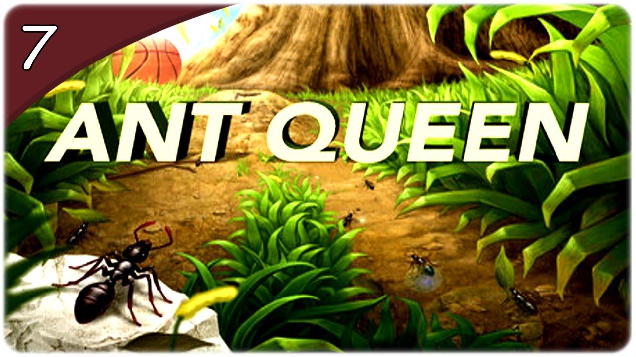 Antz queen