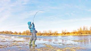 Спиннинг по Первому Льду ЩУКИ ЗВЕРЕЮТ ОТ ТАКОГО РАЗМЕРА Рыбалка эксперимент