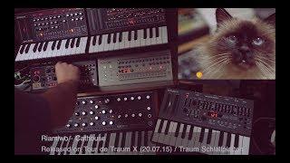 Riamiwo feat. Bruno - Cathouse  (Livesession) Tour de Traum X / Traum (Riamiwo StudioVlog 74)