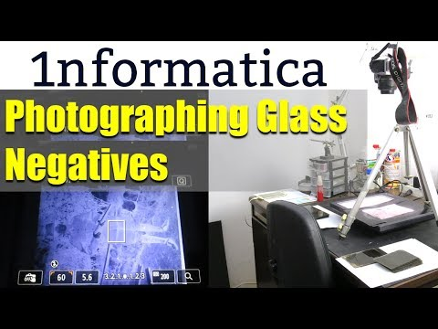 Photographing Glass Negatives - Photographic Project Tutorial