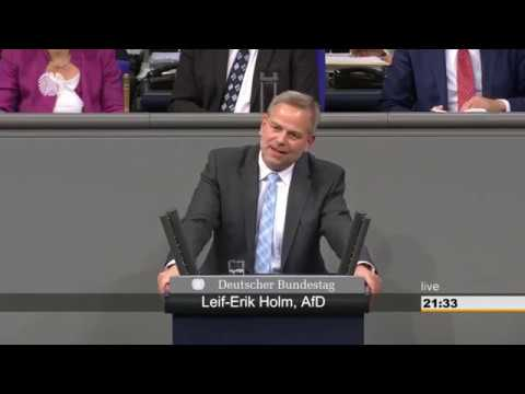 Leid-Erik Holm(AfD) Meiden Wissenschaftler Dresden wegen der AfD?