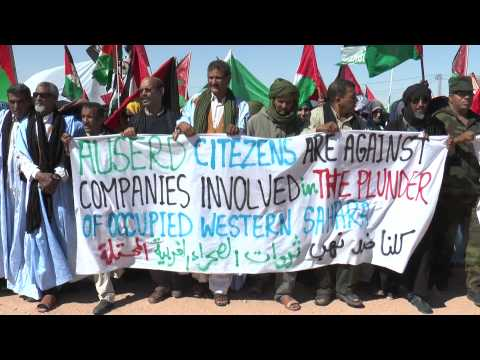 Glencor, Kosmos.. Dirty companies get out of Western Sahara
