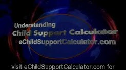 Texas Child Support Calculator TX | How To Use It