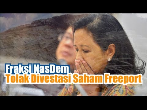 Fraksi NasDem Tolak Divestasi Saham Freeport