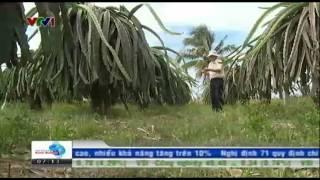 VTV ban tin Tai chinh sang 31 07 2014