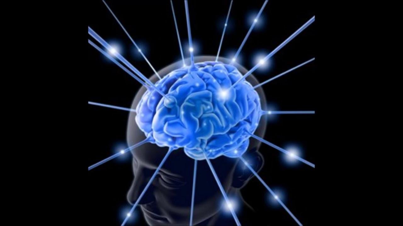 formas de despertar el cerebro