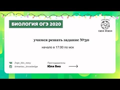 Учимся решать задание №30 по биологии 2020   Зимняя школа по биологии ОГЭ   EASY PEASY