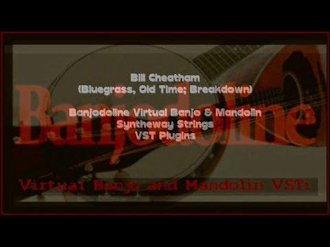 Syntheway Vst Instruments Virtual Banjo Vst Plugin