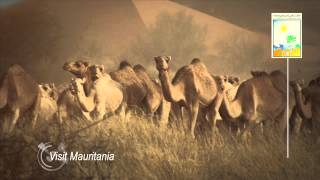 2014  MAURITANIE BILBOARD 6 SEC HD