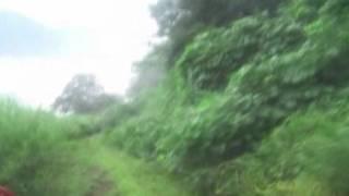 新山の神トンネルの旧道 利賀村ダート道
