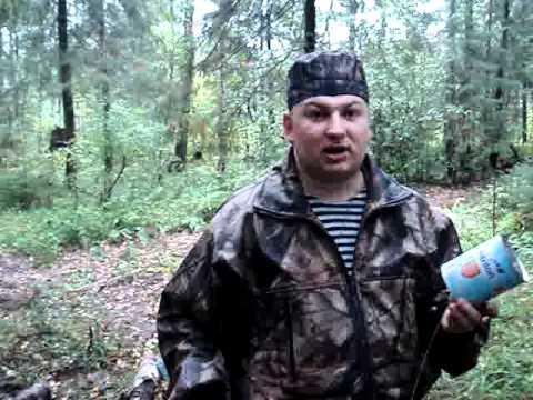 Лось: охота на реву - Охота