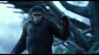 Apes Revolution : Il pianeta delle scimmie - Trailer Italiano