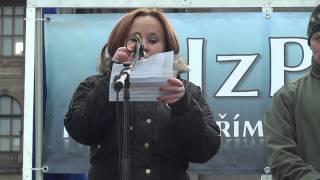 Demonstrace HzPD 28.10.2012 Kateřina Sedláčková - Nutnost spolupráce mezi iniciativami