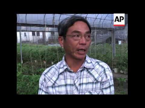 Urban farmers go organic in Hong Kong