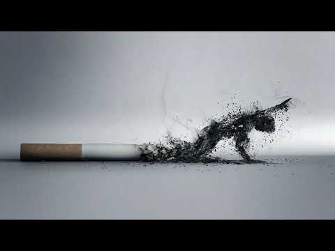 Как быстро очищаются легкие после того, как бросить курить?