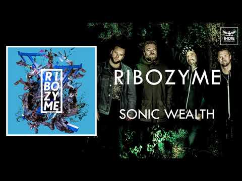 Ribozyme - Sonic Wealth Mp3