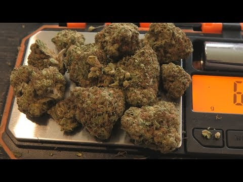 7 Different Types of Legal Weed