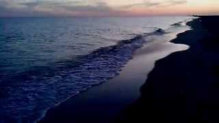 Прогулка к черноморскому биосферному заповеднику(Черное море, Херсонская область Голая пристань поселок Железный порт август 2015., 2015-09-09T22:46:06.000Z)