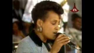 Oromo Music - Qallaakoo - Ababach Daraaraa