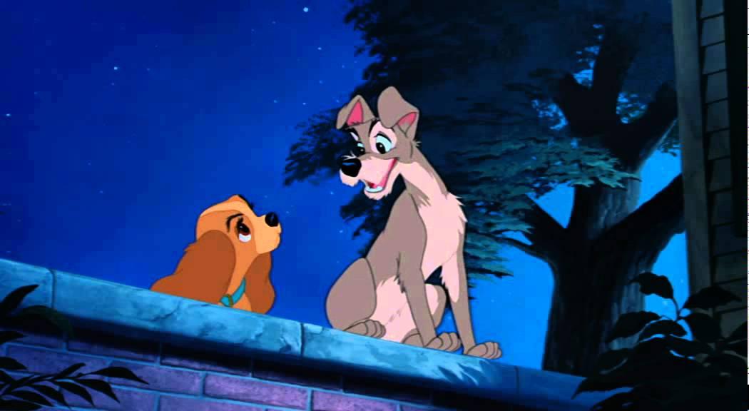 Disney Susi Und Strolch Diamond Edition Dvd Blu Ray Youtube