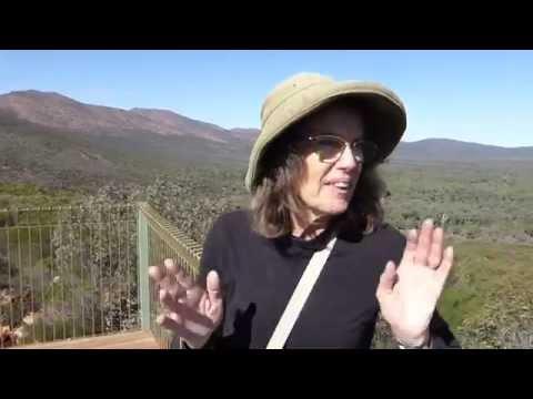 Wilpena Pound Caravan And Campground, Flinders Ranges SA