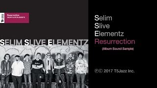 Selim Slive Elementz / Resurrection (Album Sound Sample - Official)