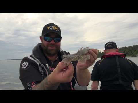 Fishing The Gippsland Lakes Aboard  Bull Cruisers