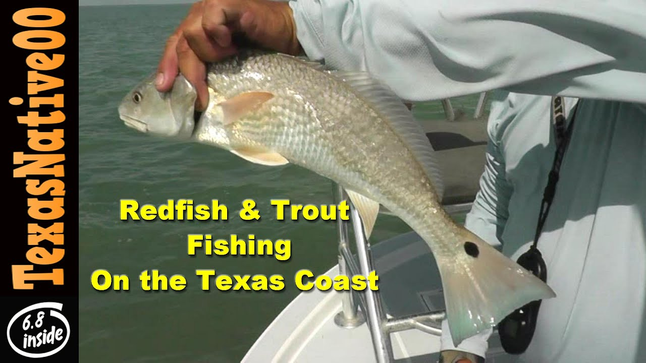 Fishing for redfish and trout on the texas coast south for South texas fishing