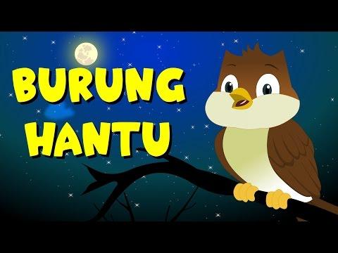 Burung Hantu | Medley 20 mins | Kumpulan | Bintang Kecil | Bagun Tidur | Lagu Anak TV