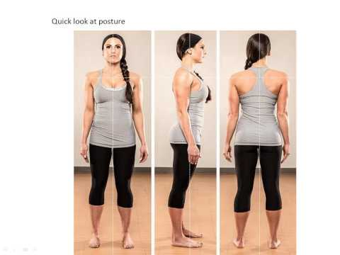 2015 08 12 12 11 Posture and Biomechanics