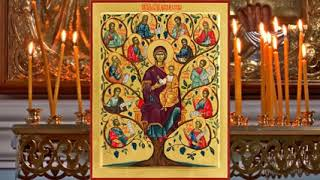 Богородичное правило  Молитва Богородице Дево Радуйся