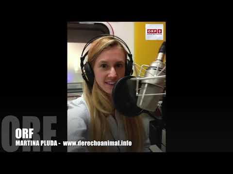 On Radio Salzburg the case of Sheep Dorli with Martina pluda