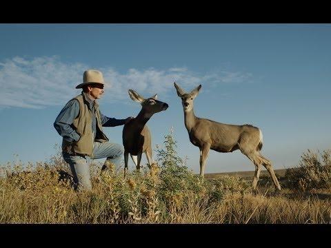 Touching The Wild (Full Documentary)
