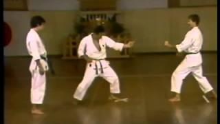Masahiko Tanaka   The Champion