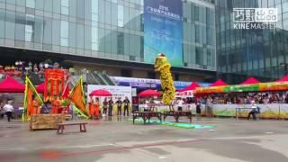 中國廣州龍獅文化節國際邀請賽2016@香港温健安龍獅體育總會