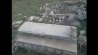 La tombe à ma grand mère ENCORE à la herbole (by Ketro)
