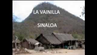 TREINTA CARTAS. LOS CERVANTES DE SINALOA DE LEYVA