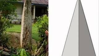 Prasejarah di Minangkabau, Sejarah Kebudayaan Indonesia(SKI) kelompok 3, NK 2 2013