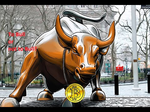 Daily Bitcoin Analysis 02/12/2020 To Bull or not to Bull?