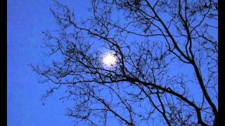 Headcollision - lullaby