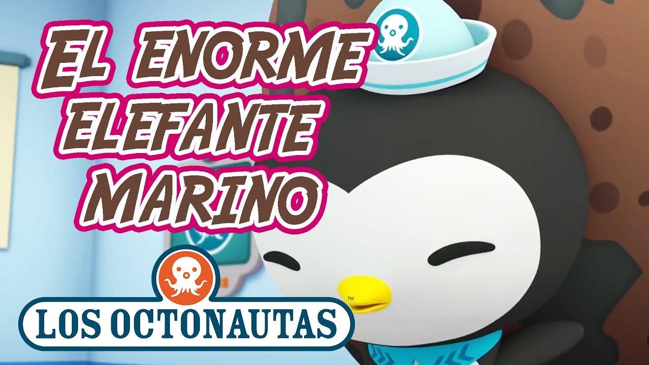 Los Octonautas Oficial en Español - El Enorme Elefante Marino| Episodio 29