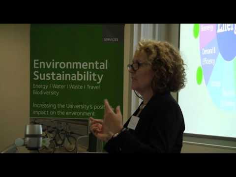 University of Oxford Carbon Innovation Programme