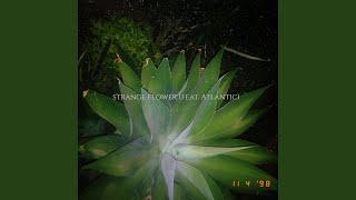 Strange Flower (feat. Atlantic)