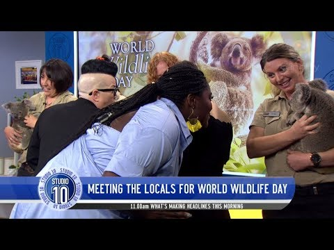 Danielle Brooks, Samira Wiley, Yael Stone & Lea DeLaria Surprised By Aussie Wildlife  Studio 10