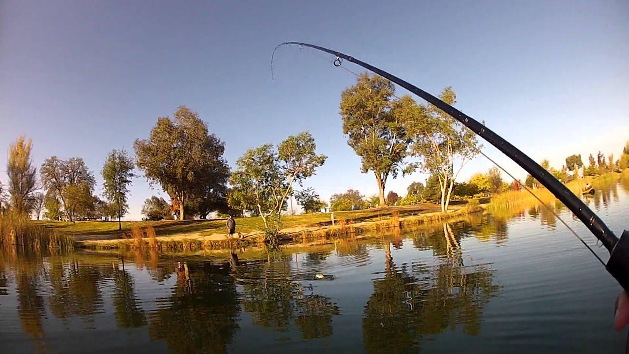 Lake camanche southshore trout pond fishing youtube for Lake camanche fishing