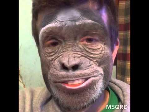 Single Monkey Dating Video