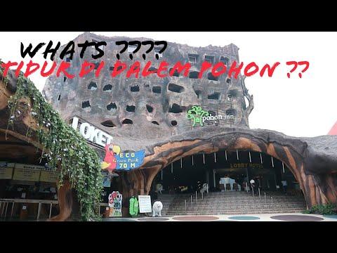 hotel pohon inn batu malang jatim park 2 room tour youtube rh youtube com