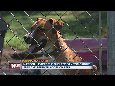 Tulsa SPCA participating in Empty the Shelter Day